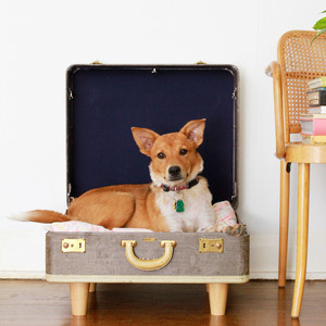 pet bed from an upcycled suitcase