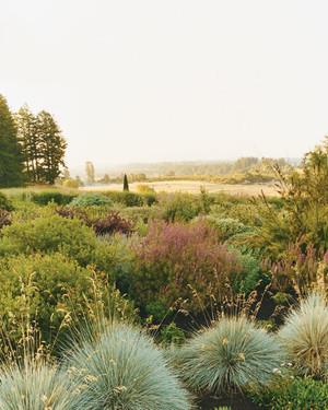 Garden Tour: The Reids' Extraordinary Garden