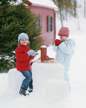 la103058_1207_snowtable.jpg