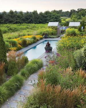 Garden Tour: Tranquil Landscape