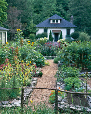 Garden Tour: An Edible Landscape