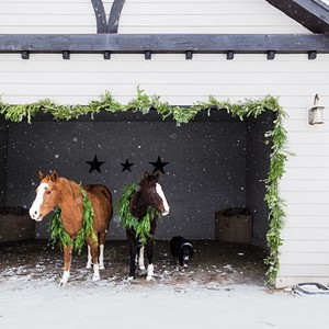 horses with garlands