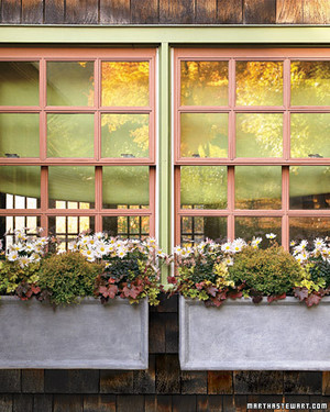 Autumnal Container Gardens