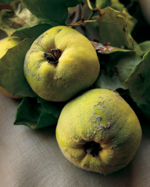 Easy quince fruit recipes
