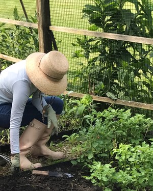 10 Essentials Every Gardener Should Own