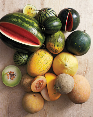 A Baker's Dozen of Our Favorite Summer Melons