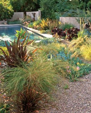 Garden Tour: Serene Setting