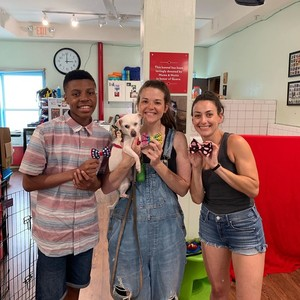 Darius Brown Delivering Bowties for Shelter Dogs