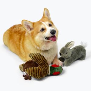 188APP玛莎·斯图尔特狗玩具