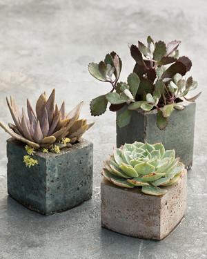 Hypertufa Pots and Faux Bois Planters