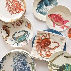 beach-themed plates