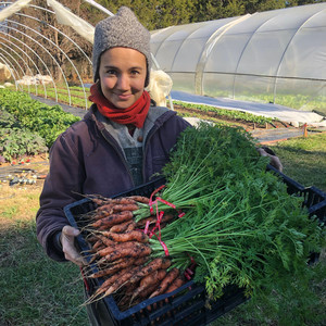 vera with box of carrots