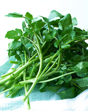 Watercress Recipes