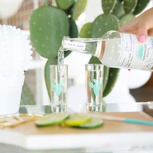 cinco de mayo floral fiesta pouring drink cactus glass