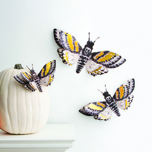 martha stewart moth dimensional dcor