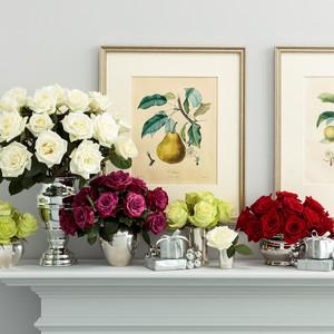 Martha Stewart Flower Subscription