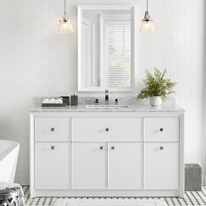 home depot vanity bath white plant