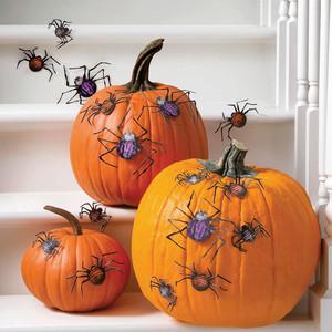 Martha Stewart Spider Silhouettes