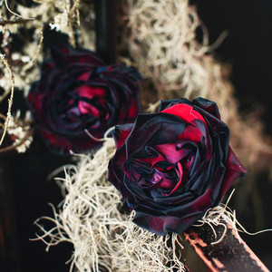 halloween rose gold dinner party black red roses