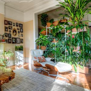 indoor nook with green vertical garden