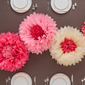 Martha Stewart Crafts ® Tissue Paper Flower Kit