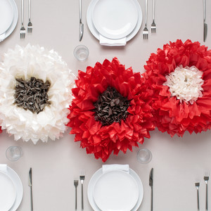 Tissue Pom Pom Flower Kit