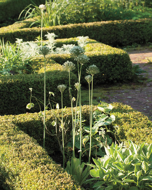Seven Elements of a Formal Garden Anyone Can Use