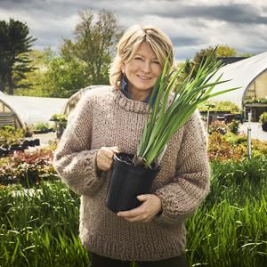 Martha Stewart's QVC Gardening Collection