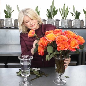Martha Stewart and BloomsyBox Rose Subscription