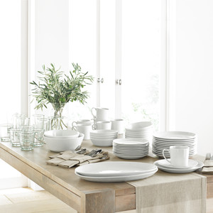 Martha Stewart Collection Everyday Entertaining Collection