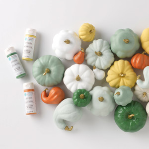 Painted Gourds and Pumpkins