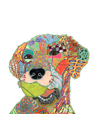 Colorful Pet Portraits
