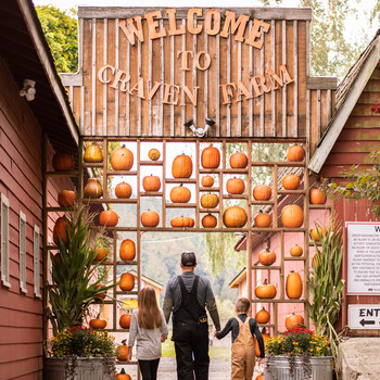 pumpkin farm entry sign employee on ladder