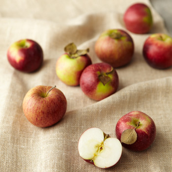 Six Apple Varieties Recalled in Multiple States Over Listeria Concerns