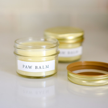 paw balm small jars