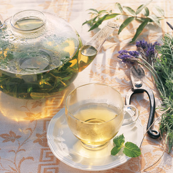 Fresh-Herb Tisane