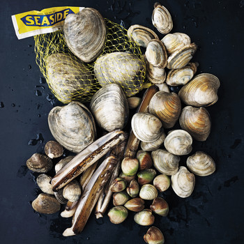 A Buyer's Guide to the 7 Clams Everyone Should Know