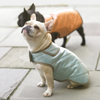 Water-Resistant Dog Coats