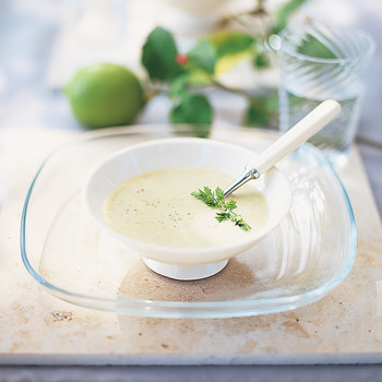 Chilled Fennel and Leek Soup