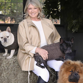 Martha Is Launching a New Line of CBD for Pets