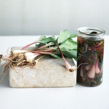 veggies in a jar