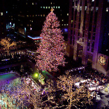 Rockefeller Center's 2020 Christmas Tree Will Arrive in New York City This Weekend