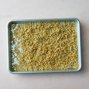 cooked sorghum