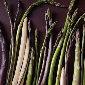 The Health Benefits of Asparagus: Why Everyone Should Eat More of This Mighty Green