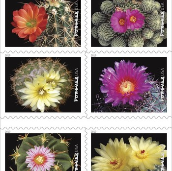 The United States Postal Service Is Releasing a Beautiful New Set of Cactus Flower Stamps