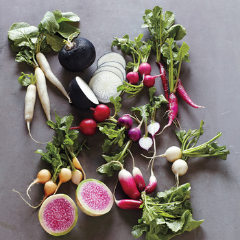 Ravishing Radishes: Our Guide to All the Delicious Varieties