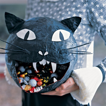 Black Cats Mean Bad Luck (They Don't) and Other Halloween Myths, Debunked!
