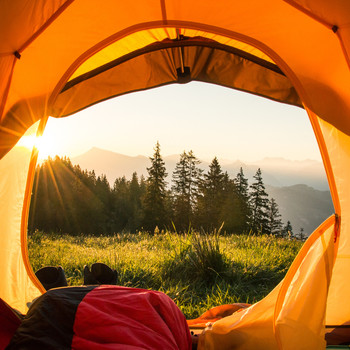 camping tent opening to forest outdoors