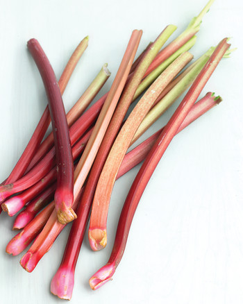 Rhubarb Recipes