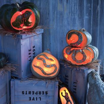 Vile-Varmint Pumpkins
